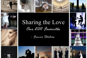 new york wedding photographers' 2011 favorites